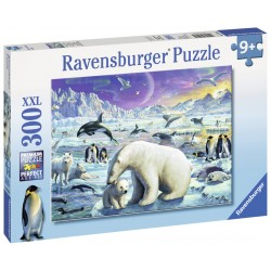 Puzzle Animale polare - 300 piese