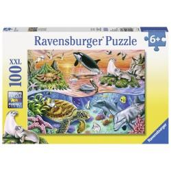 Puzzle Minunatul ocean - 100 piese