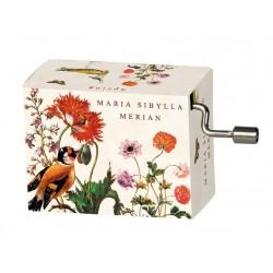 Flasneta Maria Sibylla Meriann Vivaldi Spring