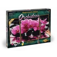 Kit 3 tablouri pictura pe numere Schipper Orhidee