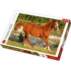 Puzzle Trefl - Frumosii cai 500 piese