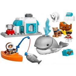 LEGO DUPLO - Arctic 10803